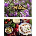 Vive la diversión del verano entre mariposas, flores y colibríes