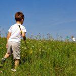Las alergias también están presentes en el verano