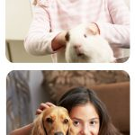 Convivencia entre hijos y mascotas sin bacterias