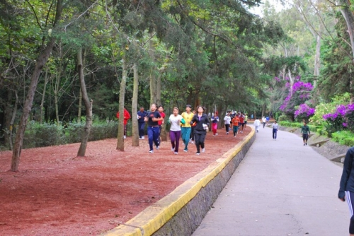 www.corredoresdelbosquedetlalpan.com.mx