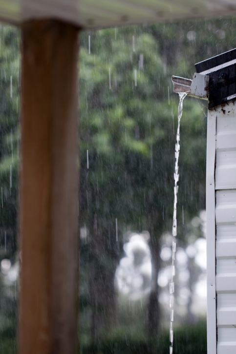 ¿Cómo eliminar la humedad y las goteras?