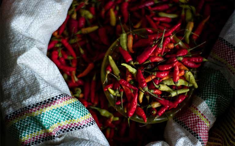 el chile es un símbolo patrio mexicano