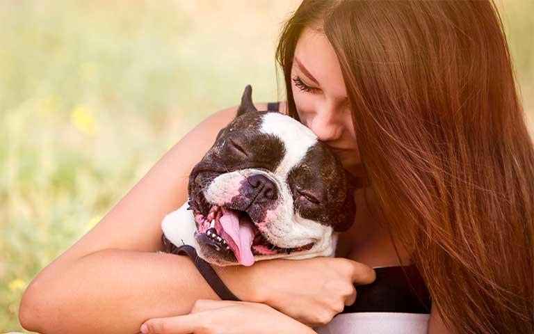 Entrenamiento y diversión: la importancia de que tu mejor amigo se ejercite