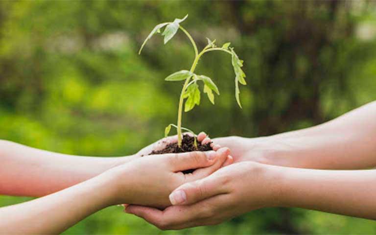 Consejo nacional de la agenda 2030 para el desarrollo sostenible